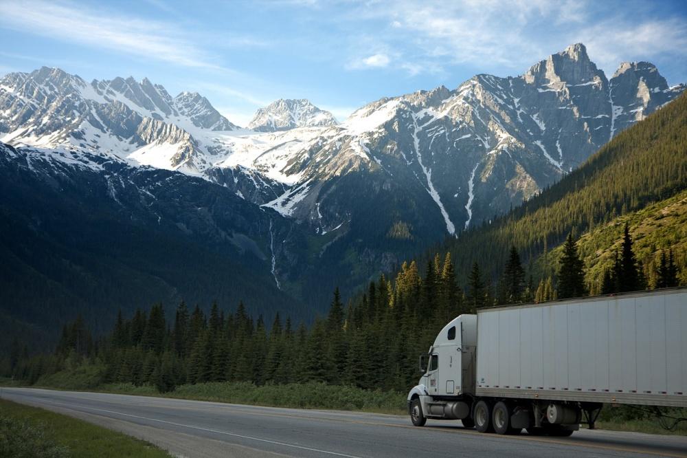 camion senza cabina